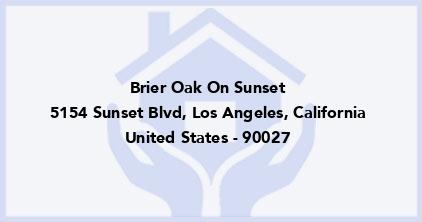 Brier Oak On Sunset