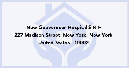 New Gouverneur Hospital S N F